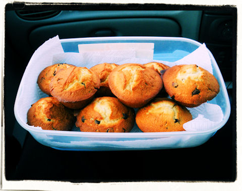 Muffins! Lovely muffins!